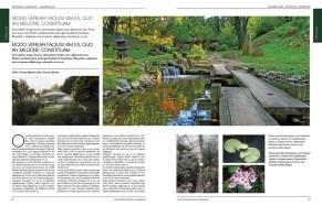 met-magazine-master34
