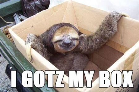 Sunday Box Talk – Get IN the Box!
