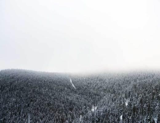 Hahnenklee, Harz