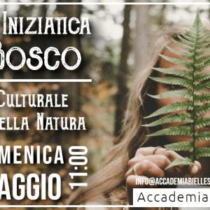 ACCADEMIA BIELLESE -biella -white rabbit event -accademia -bagno nella foresta - shinrin yoku - irene belloni