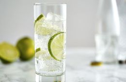 gin and tonic cocktail