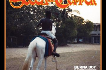 steel & copper burna boy
