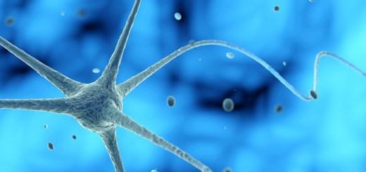 esclerosis lateral amiotrófica, enfermedades neurodegenerativas