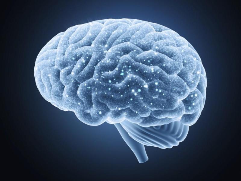 Se pudo encontrar un tratamiento innovador para la esclerosis múltiple utilizando los vasos linfáticos del cerebro
