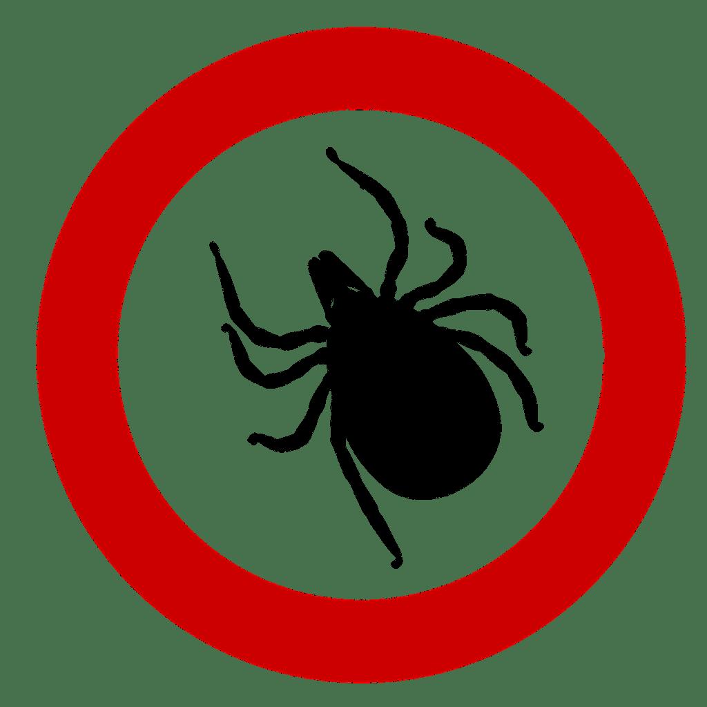 Garrapata, enfermedad de Lyme