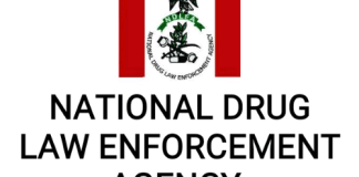 The NDLEA has published a list of eligible applicants for the narcotic officers and narcotic assistants cadres for final screening.