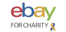eBay Foundation Web Logo