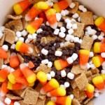 trail mix with chocolate chips, marshmallows, and candy corn