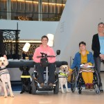 4 assistance dogs