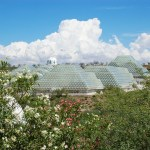 biosphere in august