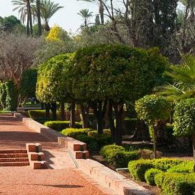marrakech accessible for All