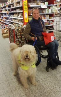 assistance dog supermarket