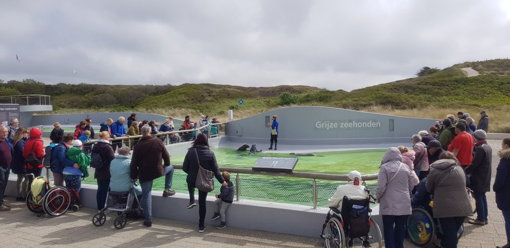 The Netherlands accessible travel