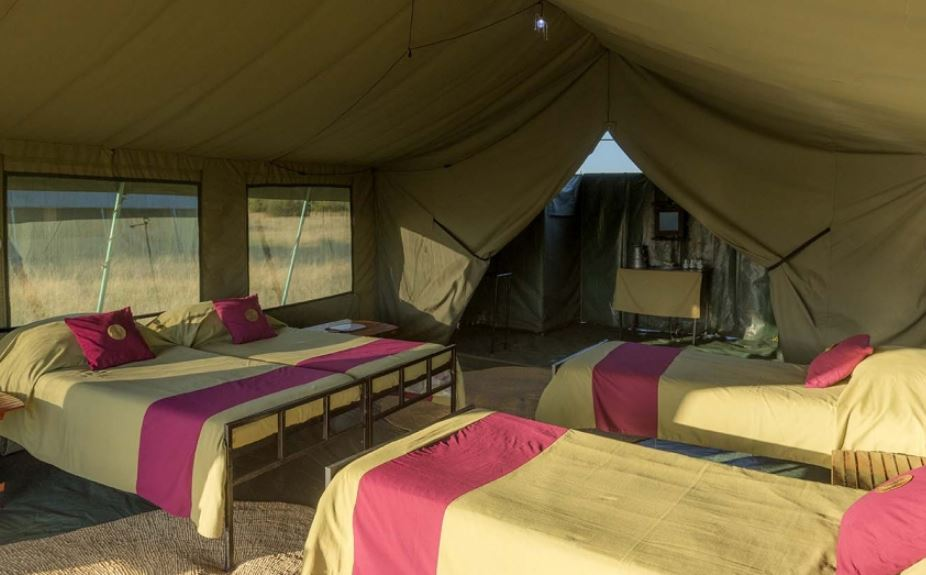 Tanzania tours camp tent