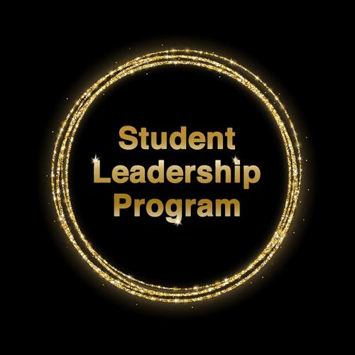 student leadership program, advanced energy healing, remote transmission, energy transmission