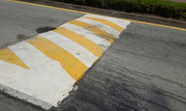 VIDEO: Foothill Farms residents discuss speed bump installation