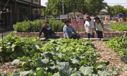 VIDEO: A Garden in Every School Symposium