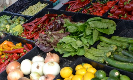 Produce Stands Can Skip The Waiting Period To Get EBT Certified