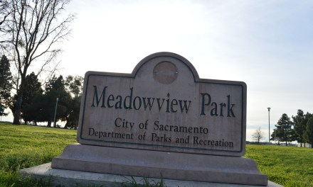 My Neighborhood, Meadowview – Continued