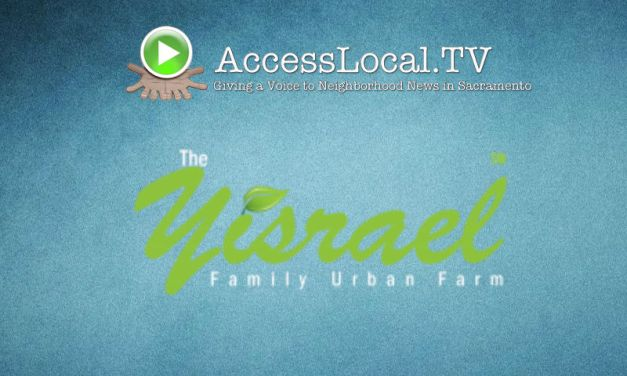 VIDEO: Yisrael Urban Farm To Fork Experience