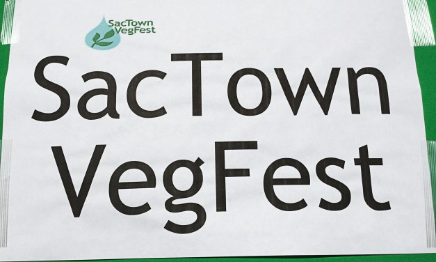 VIDEO: Sacramento Residents Enjoy Vegetarian Options at Festival