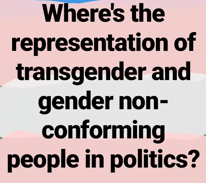 Representation Of Transgender People In Government