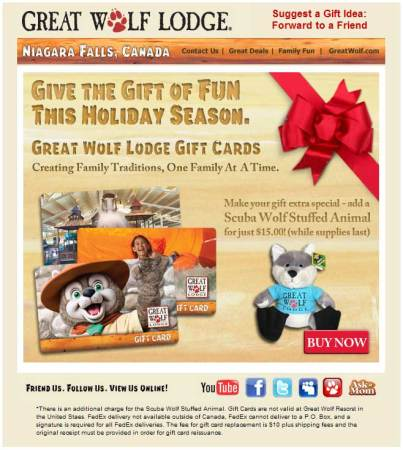 20091124_great_wolf_lodge_email_newsletter