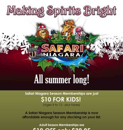20091203_safari_niagara_email_newsletter
