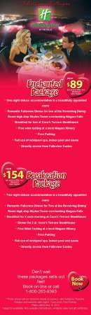 20140116_holiday_inn_niagara_falls_email_newsletter