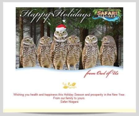 20141215_safari_niagara_email_newsletter