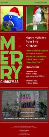 20151222_bird_kingdom_email_newsletter