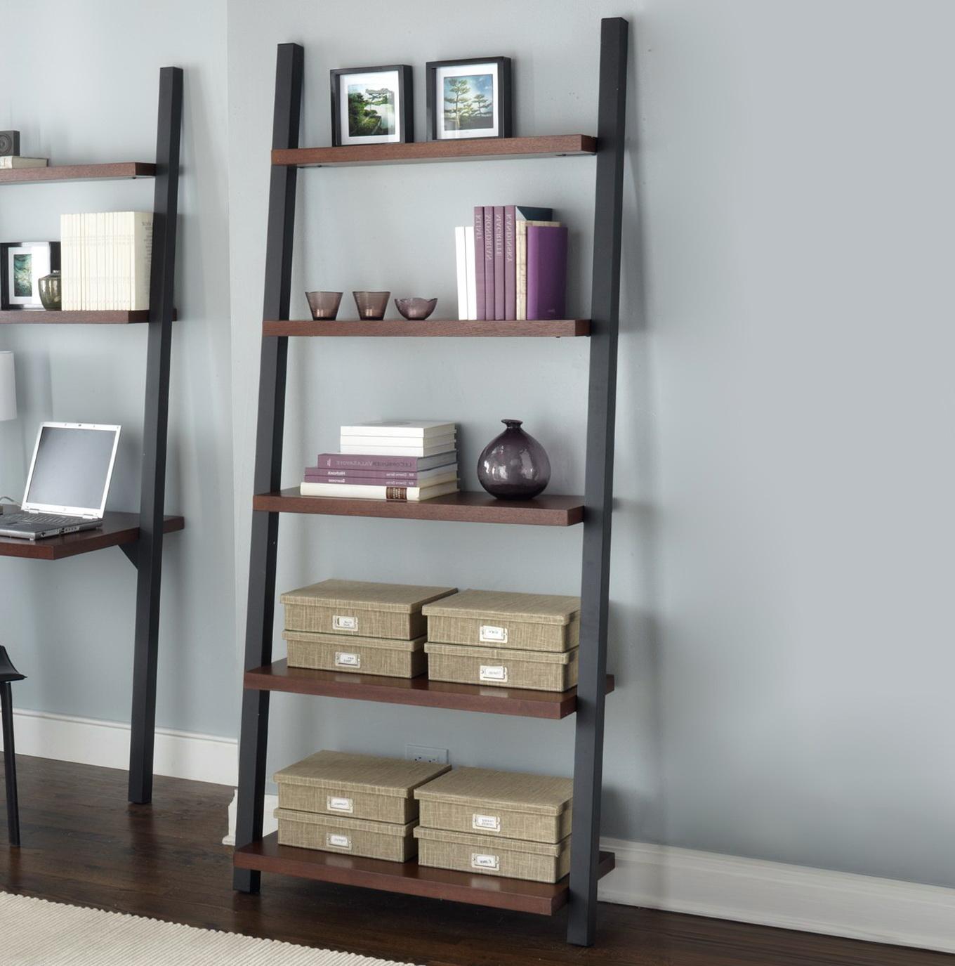 Ladder Shelf Bookcase Ikea