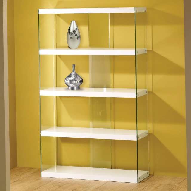 Modern Glass Door Bookcase