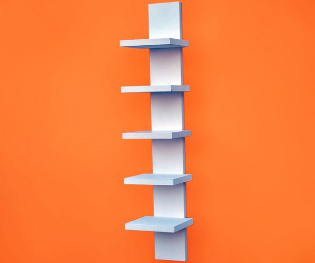 Spine Wall Book Shelves
