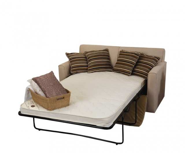 Pull Out Loveseat Bed