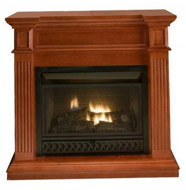 Gas Fireplace Logs Home Depot