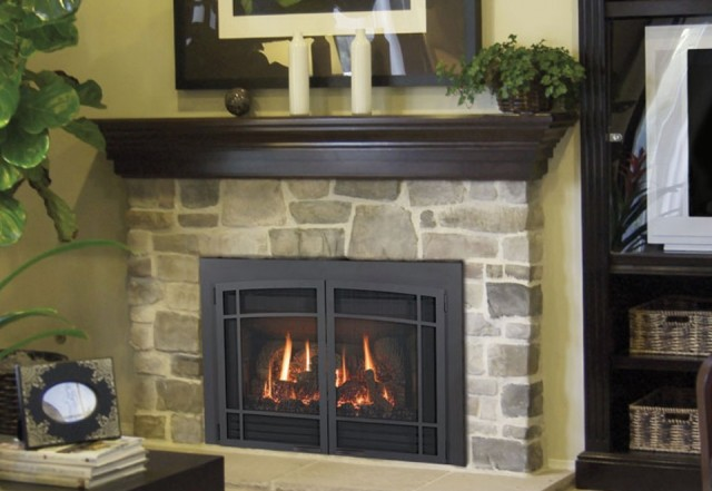 Bay Area Fireplace Inserts