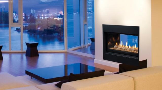 Inside Outside Gas Fireplace
