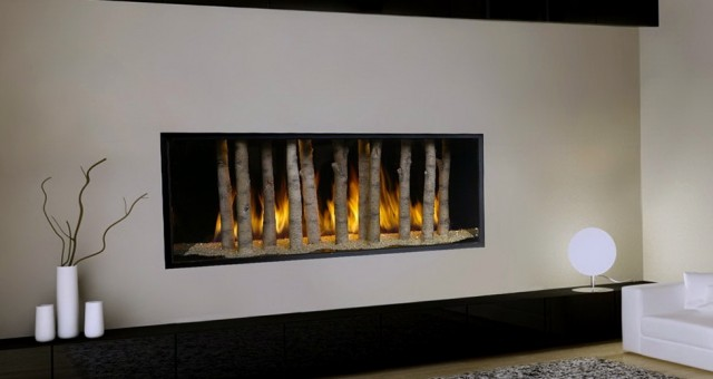 Direct Vent Gas Fireplace Prices