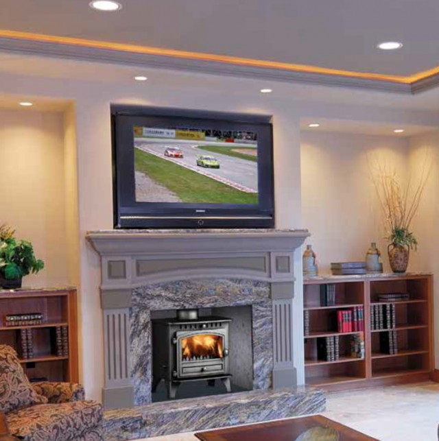 Free Standing Gas Fireplace Prices