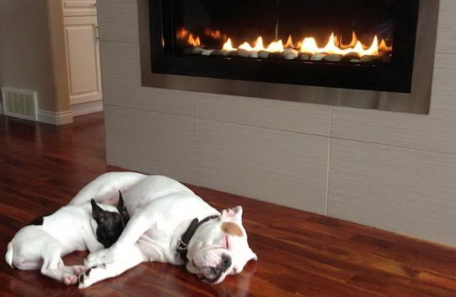 Gas Fireplace Prices Edmonton