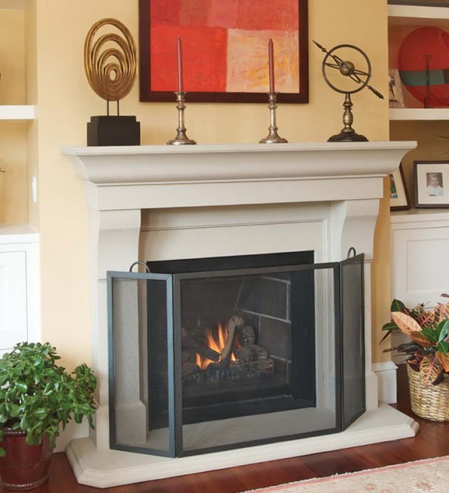Gas Fireplace Screens Children