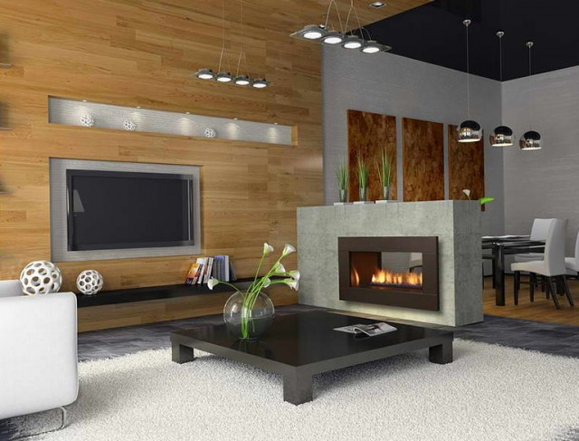 Modern Gas Fireplaces Designs