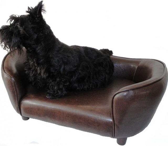 Dog Chaise Lounge Australia