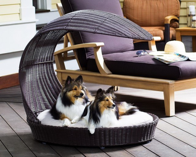 Dog Chaise Lounge Chair