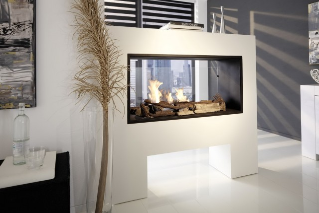 Double Sided Fireplace Indoor