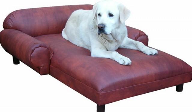 Large Dog Chaise Lounge