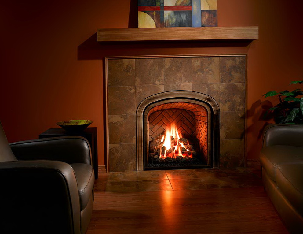 Ventless Propane Fireplace Insert With Blower | Home ...