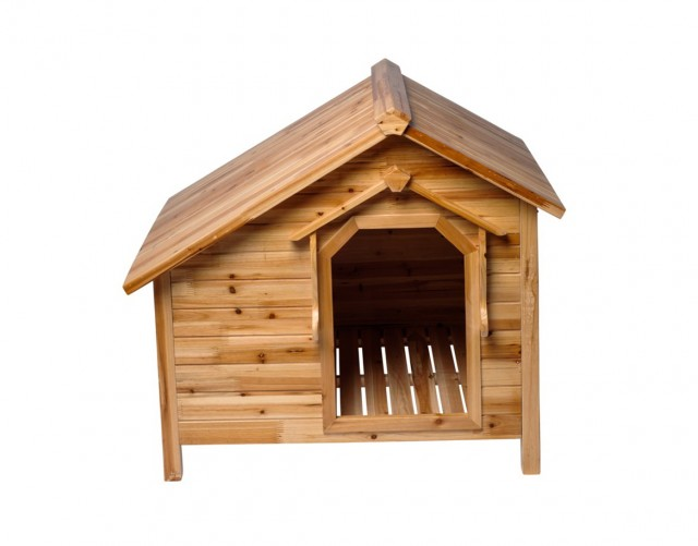 Double Dog House With Porch