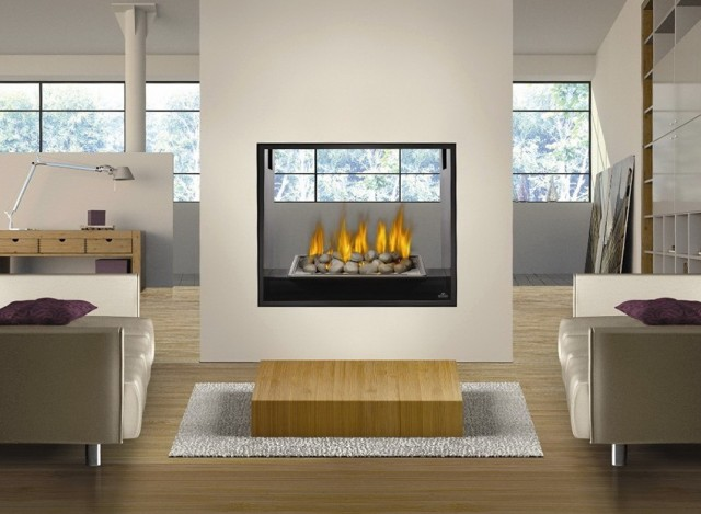 Double Sided Electric Fireplaces